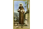 Package of 5 St Francis Holy Cards Outlined in Metallic Gold
