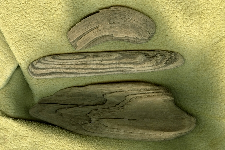 Package of 3 Small Driftwood Pieces