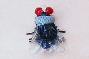 Vintage Japanese Imitation Fly Pin on Original Card