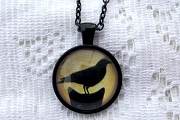 Crow Atop a Cat Pendant in Black Setting with Matching Chain