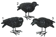 Glittering Standing Crow in 3 Poses