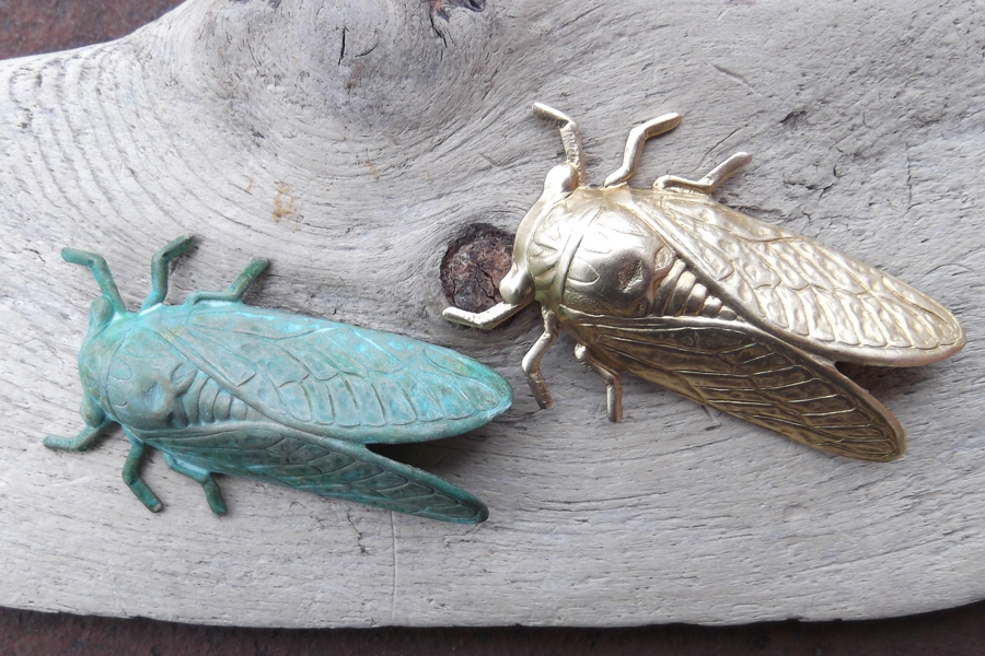 Brass or Patina Cicada Motif