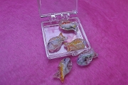 5 Little Glass Fish Beads in a Plastic Box
