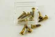 Box of 10 Vintage Brass Screws