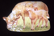 Vintage Sheep with Lamb Die Cut Gummed Sticker