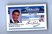 Elvis Drivers License