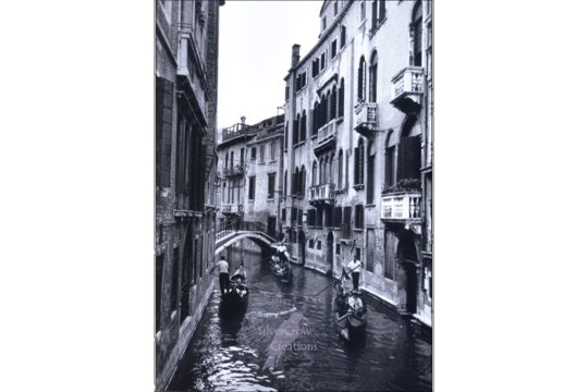Art Postcard - Venice Lovers