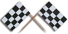 Package of 5 Checkered Flag Tooth Picks