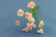 Mini Pale Pink Velvet Forget-Me-Not Bouquet