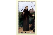 St Francis of Assisi Holy Cards - Package of 5