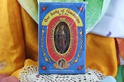 Our Lady of Guadalupe Novena in a Box
