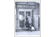 Postcard - Animal Rescue League, 1940