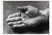 Art Postcard - Cast of Picasso's Hand, 1944 by Brassaï