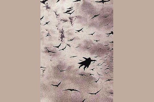 Der Flug (The Flight)  by Quint Buchholz Postcard
