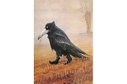 Art Postcard - Krähe (Crow)