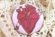 Pin-Back Button - Anatomical Heart
