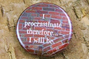 Pin-Back Button - I procrastinate...