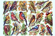 SCRAPS - Reproduction Chromolithograph Embossed Die-Cut Reliefs - Birds New