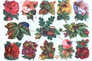 Reproduction Chromolithograph Die-Cut Scrap Relief Sheet: Bugs & Flowers
