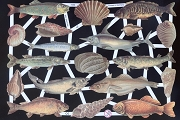 Reproduction Chromolithograph Embossed Die-Cut Reliefs - Fish and Shells Set 2