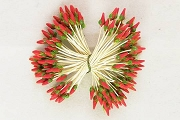 Bundle of VINTAGE Millinery Grade Flower Stamens - Red with Mossy Green Accents