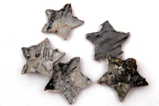 Package of 5 Birch Bark Stars