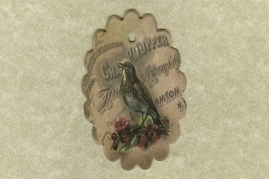 Scalloped Double Sided Collage Style Bird Tags - Package of 5