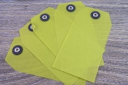Bright Lime Green Vellum Tags - Package of 5