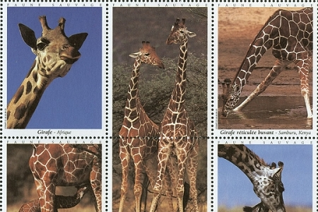 Giraffes (Faune Sauvage) - Artistamps / Faux Postes