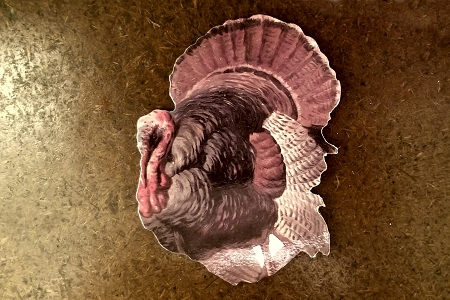 Turkey Coasters - Set of Four