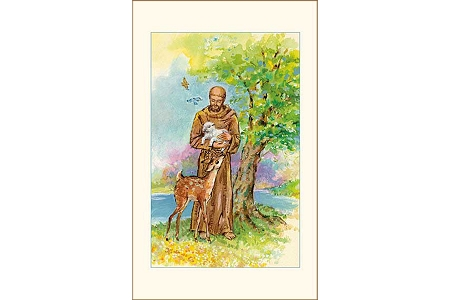 St Francis Preaches to the Birds Holy Card - Pkg of 5