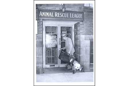Animal Rescue League, 1940 Postcard