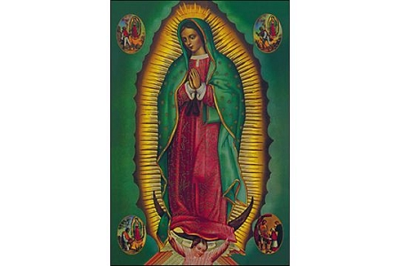 Glorious Our Lady of Guadalupe Post Card