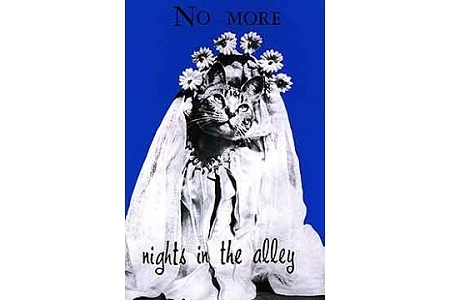 No More Nights in the Alley by Stella Marrs - Art Postcard