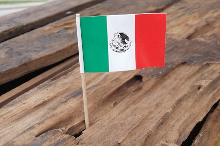 Package of 2 Vintage Mexican Flag Picks