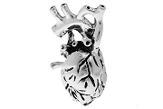 New Style Antiqued Silver Anatomical Heart Charm