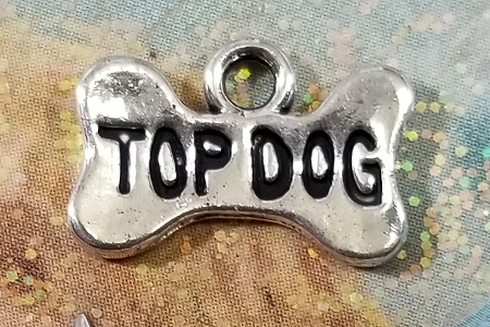 Top Dog Charm - As a Dog Bone!
