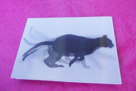 Lenticular Cat Enclosure Card