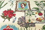 Half-Yard/s of Fabric - Frida Kahlo Images on Tea Dye Background