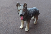 Vintage Miniature German Shepherd or Wolf