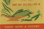 Large Vintage (Empty) Corn Seed Packet from Vitality Seeds