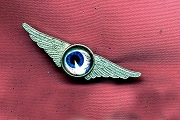 Domed Photographic Pin - Flying Eye