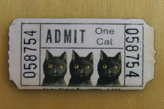 Now Your Cat Can Get In All Alone - with Our Cat Ticket Wooden Component