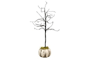 Full Moon White Pumpkin Tree