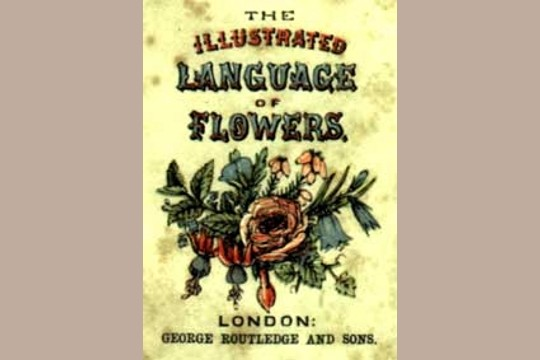 Book: The Illustrated Language of Flowers