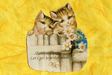 Kitties at the Fence (Two's Company) Card/Magnet Invitation