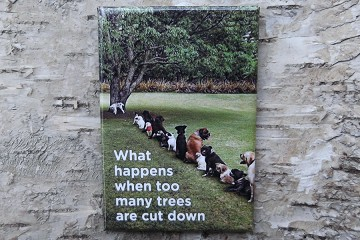 Funny Magnet featuring Dogs Waiting To Use a Tree