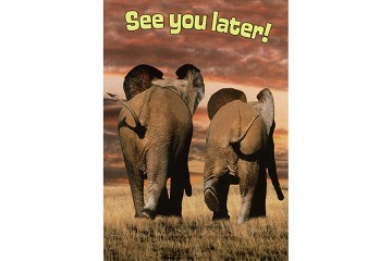 See You Later Postcard Featuring Elephant Friends