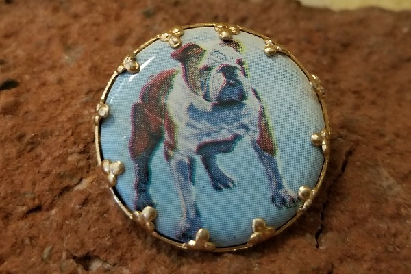 Vintage Bulldog Cabochon Pin-Back - New Old Stock