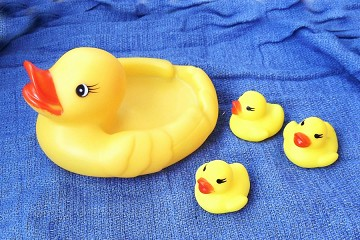 Family of Rubber Ducks
